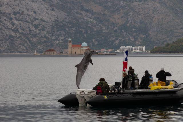 navy_kotor_montenegro