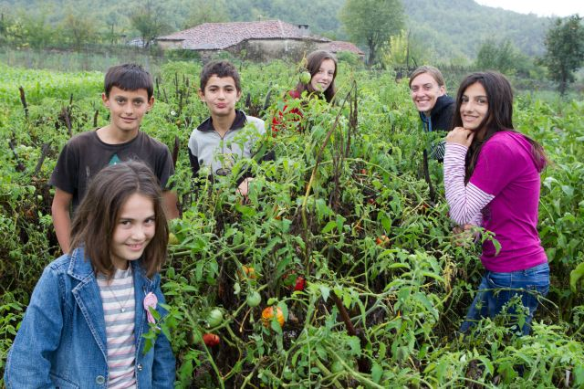 poatger_albanie