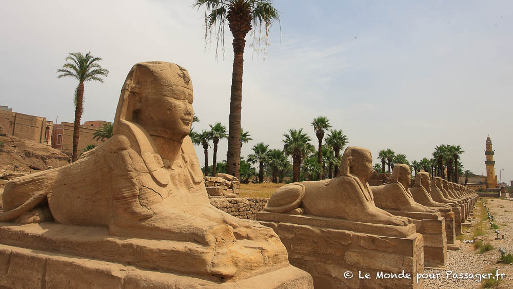 EGYPTE-MELLET017