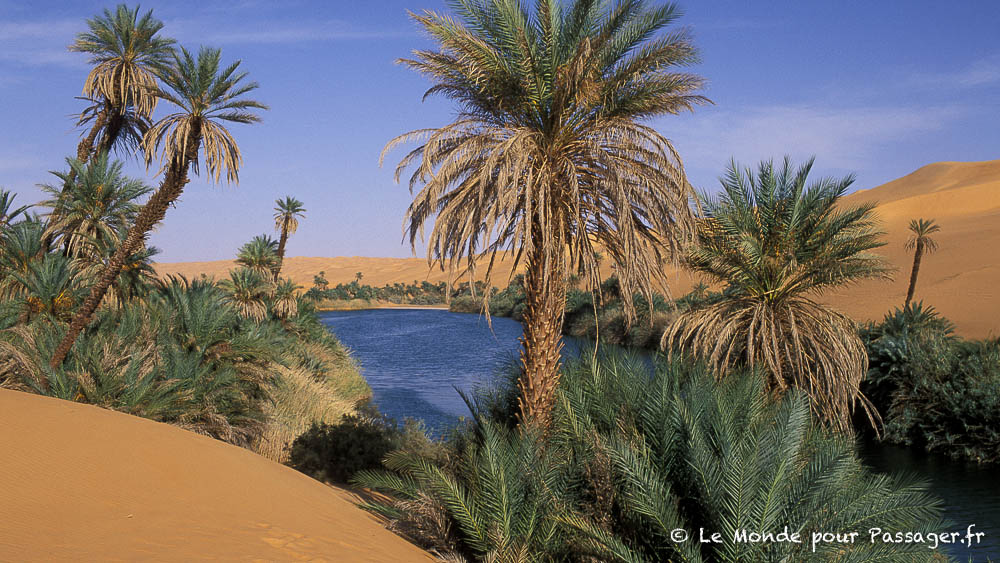 LIBYE-MELLET006