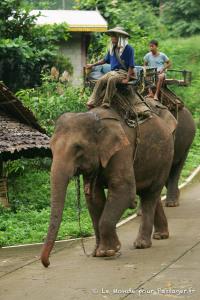 THAILANDE-MELLET008