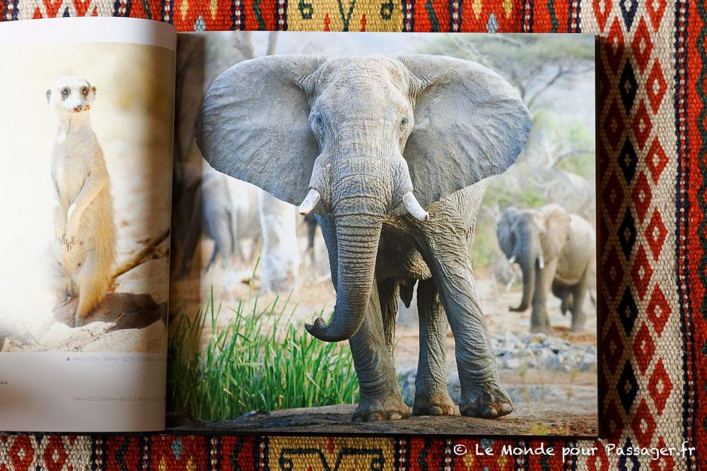 Africatracks010