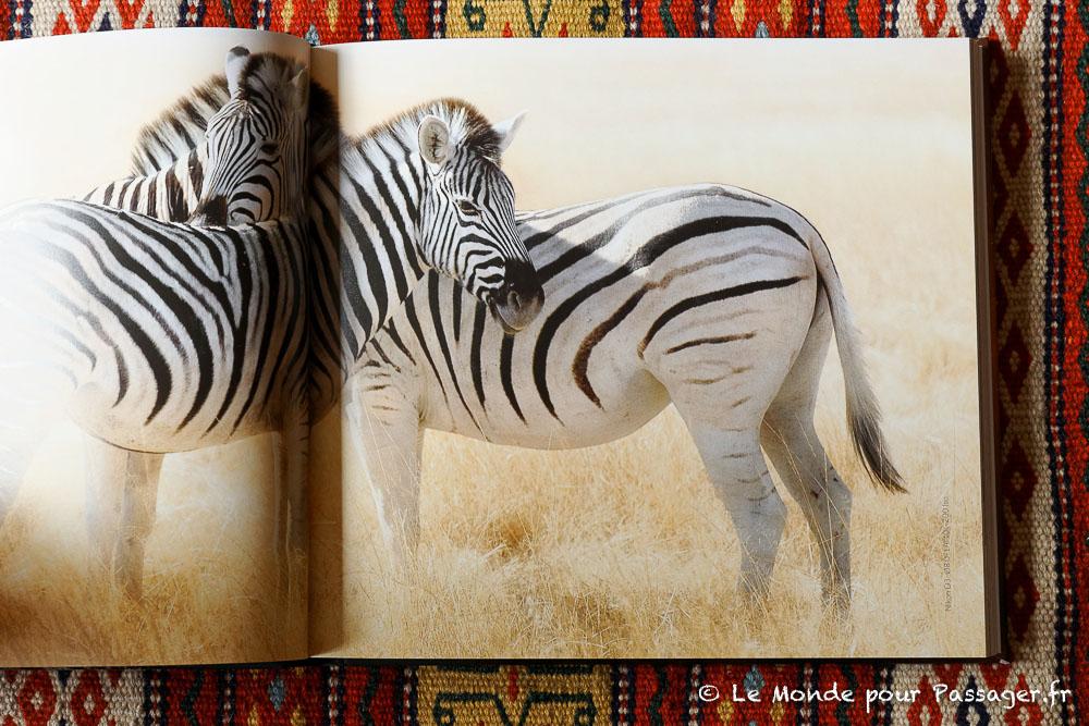 Africatracks019
