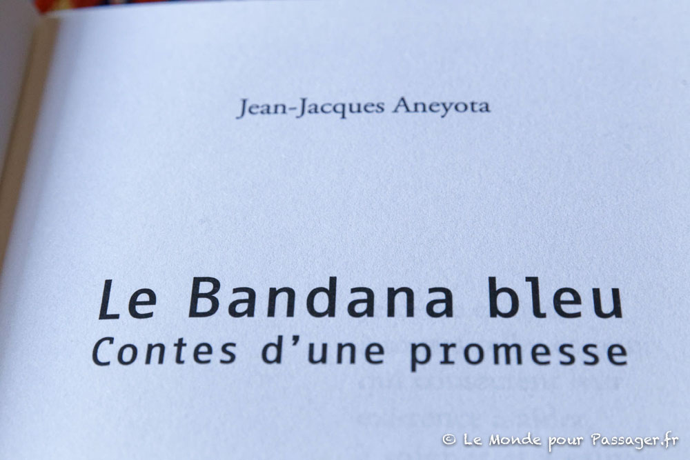 bandanableu004